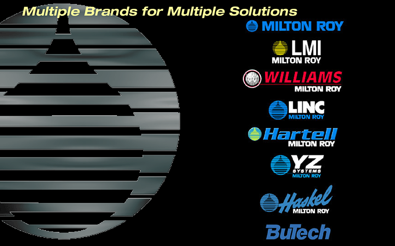 Multimedia motion graphics