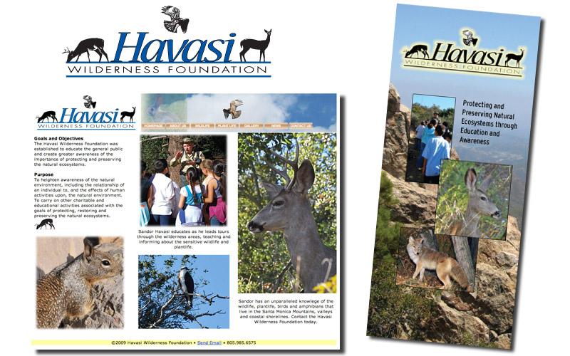 Havasi logo, website, brochures, marketing materials