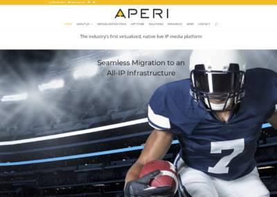 APERI website design and management