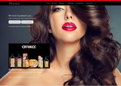 Salon Privado  website and management